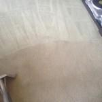 Carpet-Cleaning-Elgin