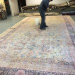 Commercial Carpet Cleaning Elgin