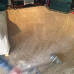Dirty-Carpet-Cleaned-Elgin