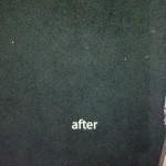 Elgin-2-after-carpet