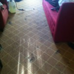 Elgin-Carpet-Clean-before