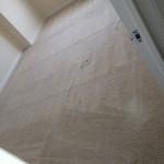 Elgin-Carpet-Clean-room