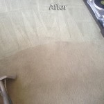 Elgin-Carpet-Cleaning-Company