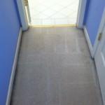 Elgin-Vomit-2-after-carpet