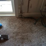 Oil-Stain-Removal-After-Elgin