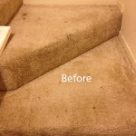 Stairs-Carpet-Cleaning-Elgin-A