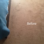ink stain removal Elgin-A